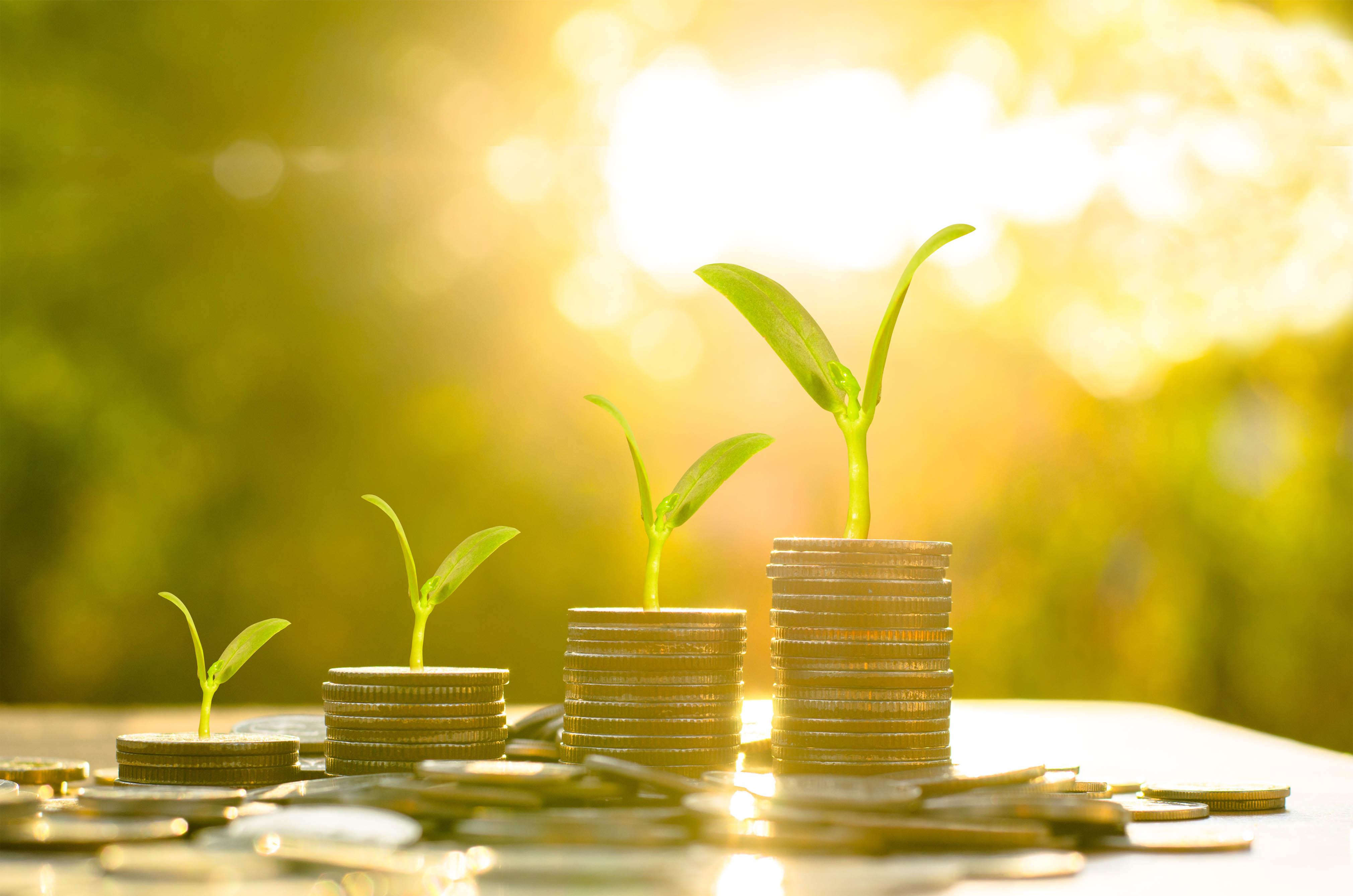 Savings at Colne PCCU
